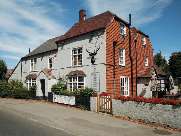 White Hart, Pennington